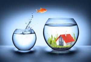 fish find house - real estate concept